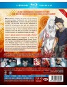 Steins Gate • Intégrale Collector Combo
